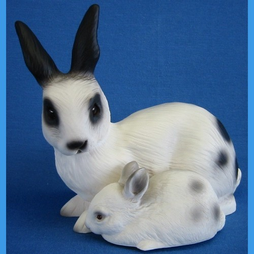 Hase mit Junges weiss